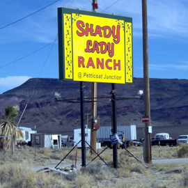 shadyranch